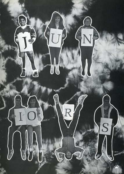 Owego - 1990-018