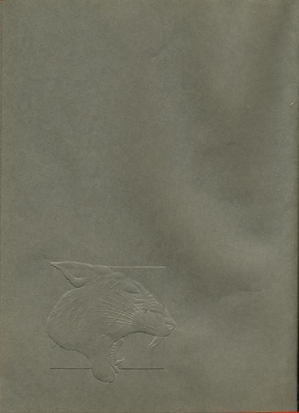 Owego - 1991-003