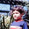 Scott, Longwood Garden, PA