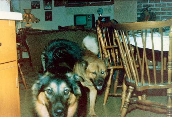 1986-09-00 BrandyAlex2