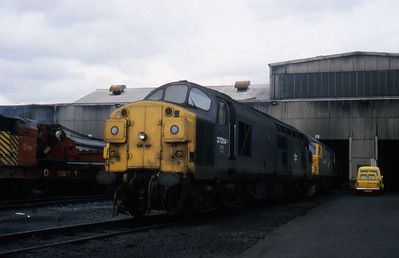 37014 and 26026 are pictured outside Eastfield TMD later that afternoon (03/04/1982)
