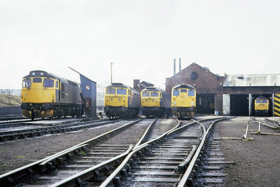 Aberdeen Ferryhill plays host (from left to right) to: 27008, 47051, 47207, 26021. The 47s in the shed are two from 47207/269/411 (07/04/1983)