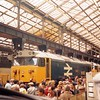 28 July 1984, Doncaster BREL Works Open Day