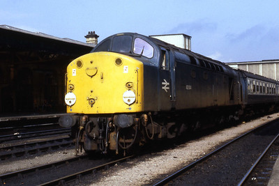 Another view of 40044 stabled at Sheffield later that afternoon (29/09/1984)