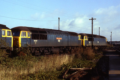 56037 'Richard Trevithick' and 56033 stabled at Westbury (22/09/1984)