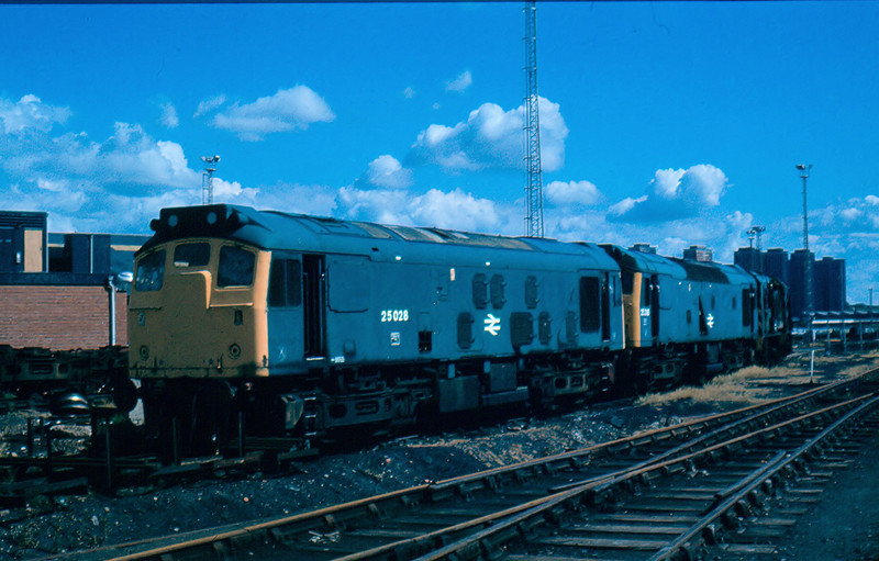 25028 + 25318 + 08246 on the scrap line in St Rollox Works Glasgow 05/08/84