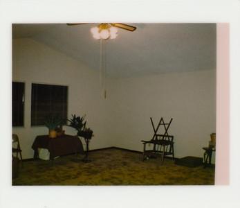 1985 Decks Dogs Assorted