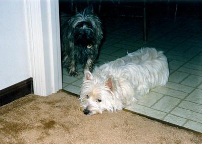 1985 Frosty & Holly