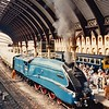 9 July 1986, York