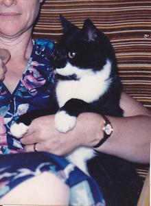 1986-Sooki