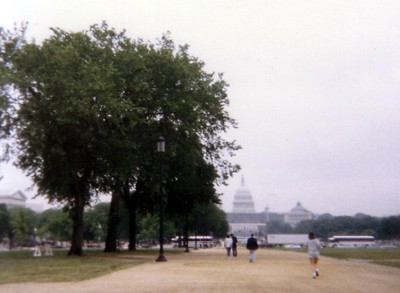 The U.S. Capitol, at the end of the National Mall