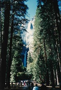 1988 California_0005 b