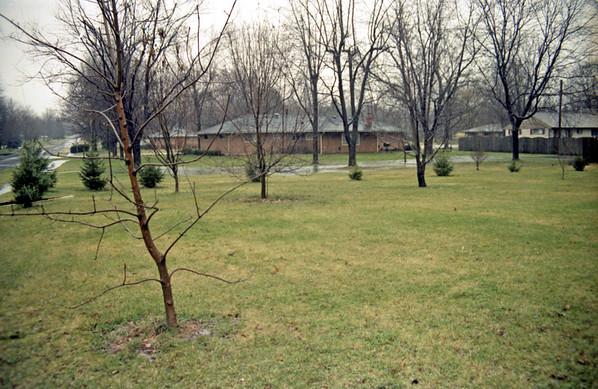 1991 scans