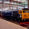 Newly repainted 50050 arrives at London Waterloo with the 09:15 from Plymouth 06/04/91