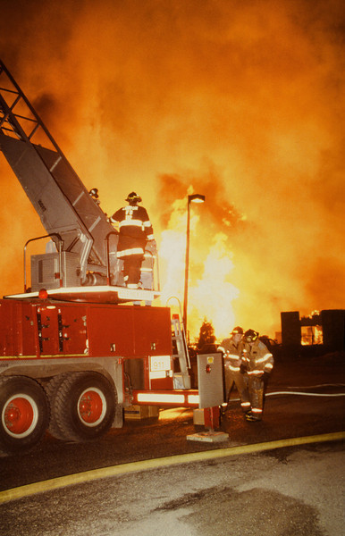 1994 Fires