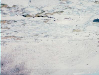 9/1/1995 ~ 9/3/1995 - Mt. Whitney Hike Part II