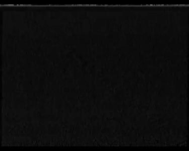 1995-08-01