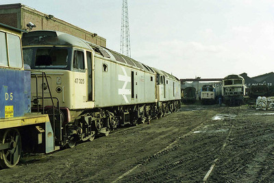 On overview of the yard, featuring 47325, 47214, and on the right 47249 heading a further line of '47s'. The adjacent row of '50s' in the centre were long-term residents dating back to the abortive 'Operation Collingwood' scheme from the mid-1990s (15/03/1998)