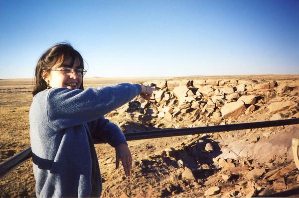 Jan. 4 -- Painted Desert, Arizona.