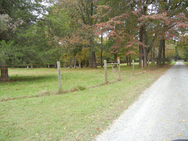 The driveway past the Locust Hill marker is simply a residential road.  This view is just before approaching the actual site of Locust Hill.