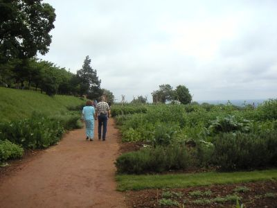 Monticello garden.  Today  the gardens circling Monticello are believed to realistically illustrate the types of crops Jefferson grew while living there in the early 1800's.
