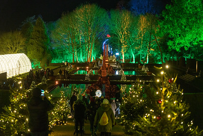 Christmas at Blenheim Palace 2019, Illuminated Light Trail - 31/12/2019@19:30