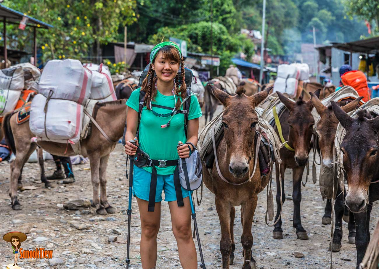 20 วัน เทรคกิ้ง Manaslu Circuit & Tsum Valley; มนัสลู เนปาล; Manaslu Trekking; manaslu trek; arkhet; soti khola; maccha khola; lapubesi; jagat