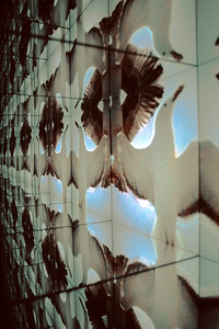 Networks video projection, mirrors 1993