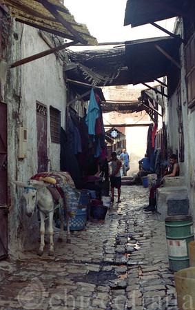 img Marocco 911 50X80