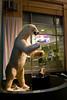 IMG_6613 polar bear