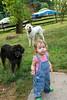 IMG_7405 e dogs