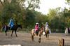_MG_0120 cr sandi horse