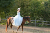 _MG_0118 sandi horse