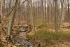IMG_1447 4 acres stream