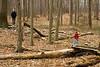 IMG_1451 daniel doug woods