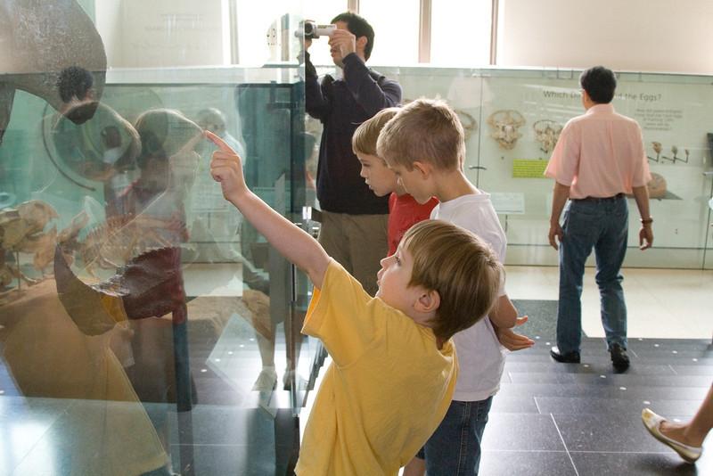 IMG_4370 cv nat hist museum daniel eric