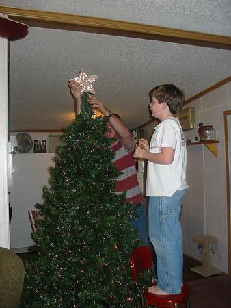 christmas tree 008