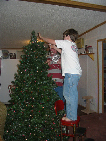 christmas tree 007