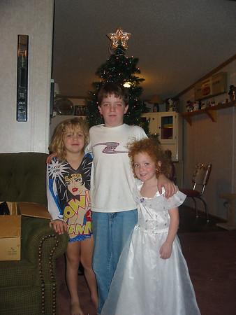 christmas tree 011