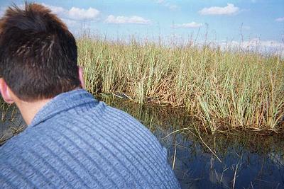 that is an sunning alligator over Steve paraka's shoulder