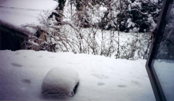 Snowday Feb 16 2001