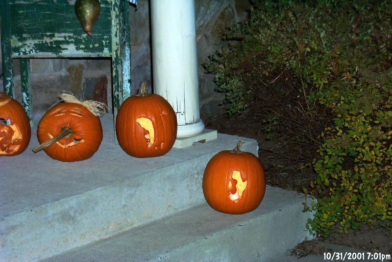 dads pumpkins