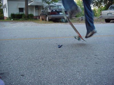 Kickflip over the chipmunk
