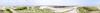 Sandy Neck panorama