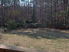 Our back yard (2001)