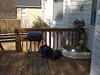 Our back deck (2001), with charcoal grill and ivy-laden fountain