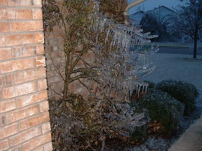 Ice Storm 2002