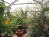 hershey garden grnhse u