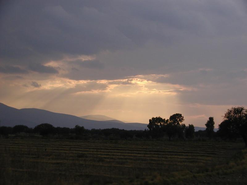 mexico fields