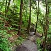 Stair Trail